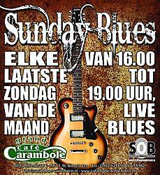 ToerismeBluesmiddag met de 4 Aces Bluesband! Winschoten