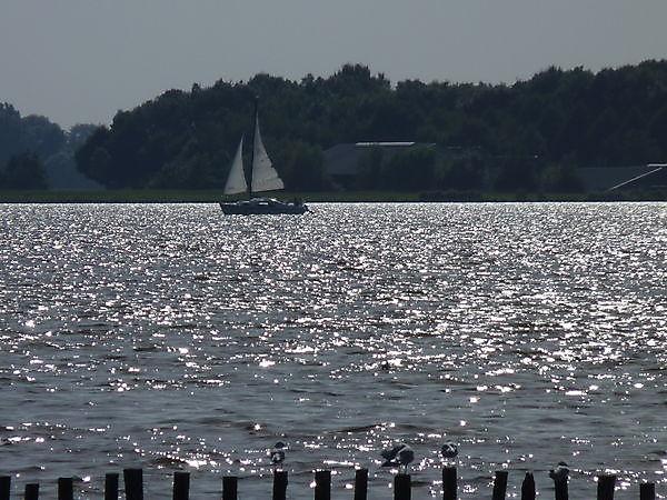 Foto Oldambtmeer Midwolda
