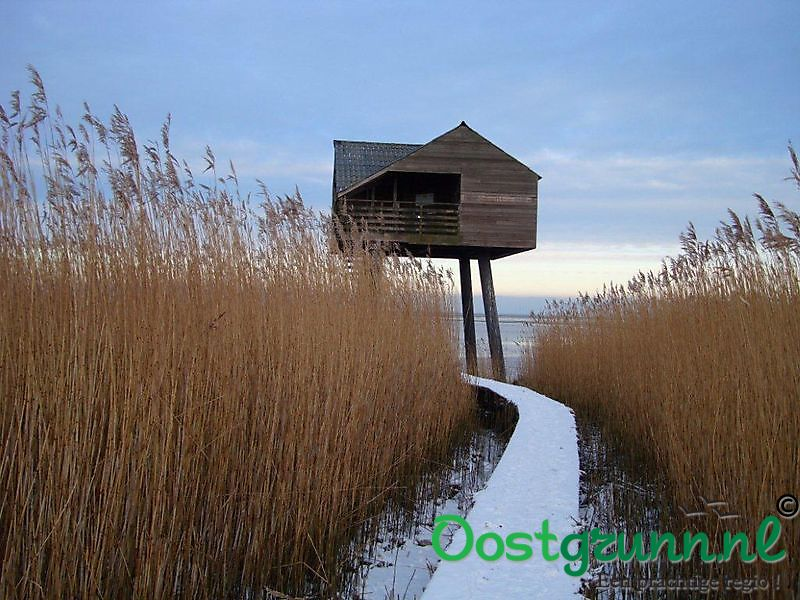 Kiekkast vogelhut in Nieuw Statenzijl Nieuw Statenzijl