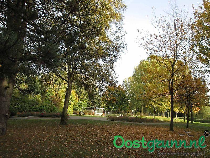 Herfstkleuren in het park Musselkanaal