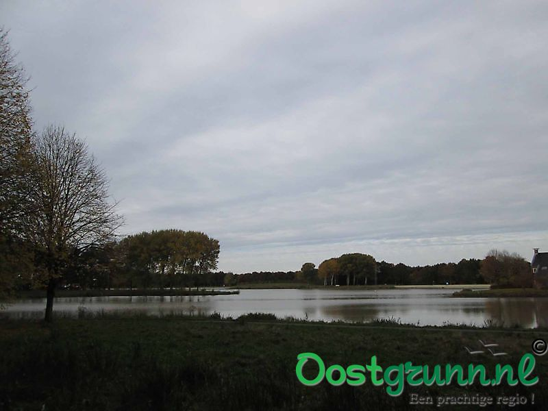 Natuurgebied Borgerswold Veendam