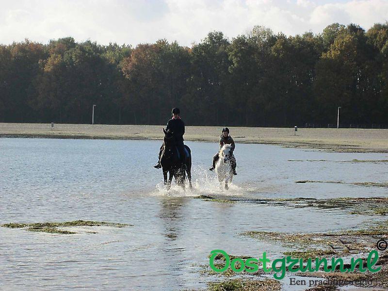 Paardrijden op het strand Midwolda
