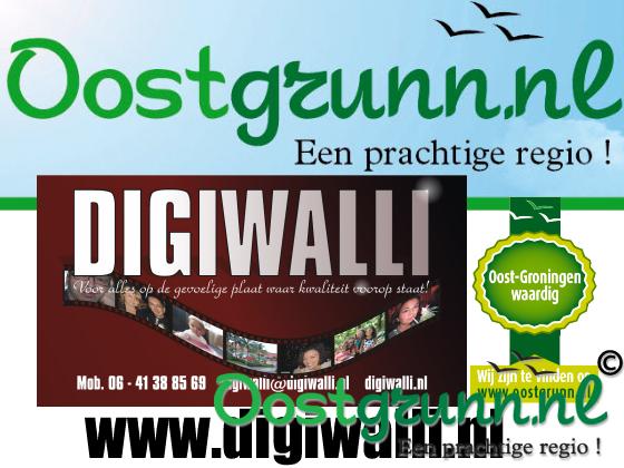 Digiwalli Stadskanaal