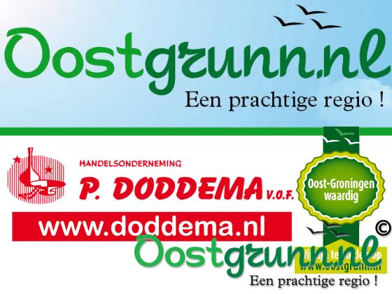 Doddema.nl Zuidbroek