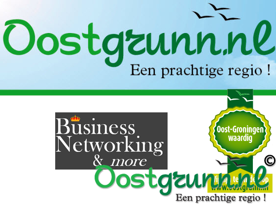 Business Networking & More Groningen