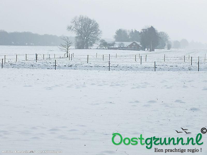 Winter landschap Bellingwolde