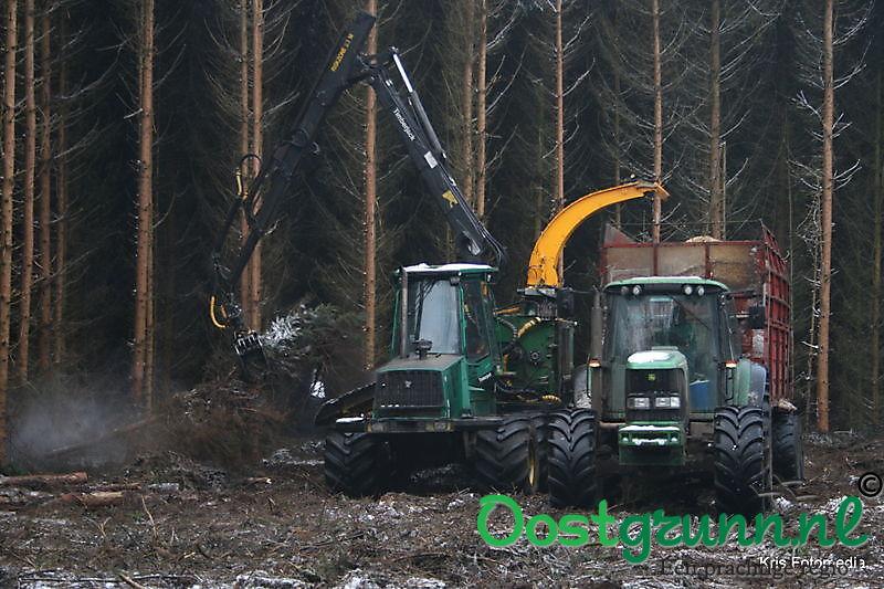 Bosbouw ter apel 't Heem