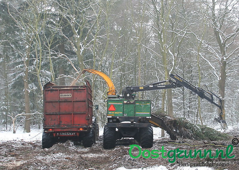 Bosbouw ter apel Ter Apel