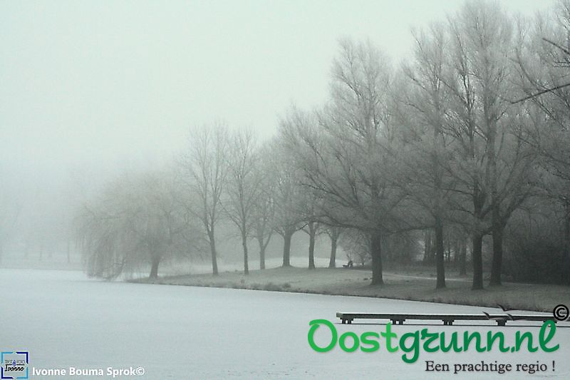 Winter in het park Winschoten