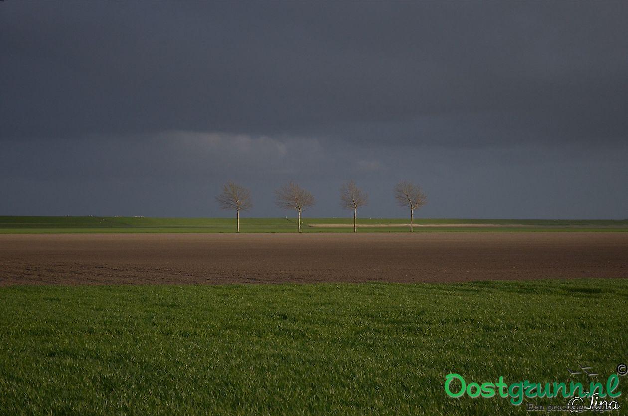 Netjes op een rij Oost Groningen