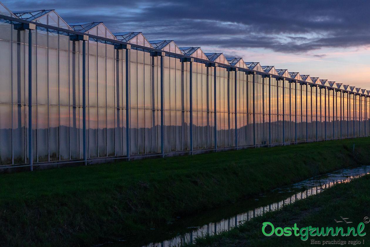 Kassen in Noordbroek Groningen