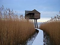 Kiekkast vogelhut in Nieuw Statenzijl Nieuw Statenzijl, Oldambt