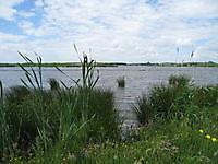 Natuurgied bij het Oldambtmeer Blauwestad, Oldambt