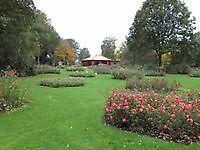 Rozenpaviljoen Winschoten, Oldambt