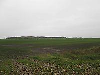Weidse akkers Beerta, Oldambt