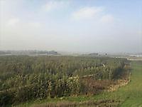 Uitkijktoren Blauwestad, Oldambt