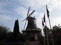 Molen de Korenbloem Vriescheloo, Westerwolde