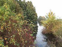 Kanaal naar de molen Wedderveer, Westerwolde