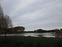 Natuurgebied Borgerswold Veendam, Veendam