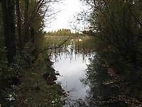 Heeresmeer Nieuwe Pekela, Pekela