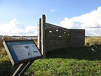 Vogelspottersplaats bij De Tjamme Beerta, Oldambt