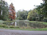 Sterrebos Winschoten, Oldambt