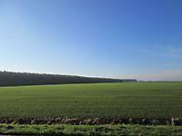 Uitgestrekt landschap Bad Nieuweschans, Oldambt