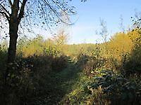 Nieuwe Schanskerbos Bad Nieuweschans, Oldambt