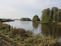 Kuurbos / Bos op Houwingaham Bad Nieuweschans, Oldambt