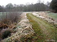 Soldatendijk in de Lethe Bellingwolde, Westerwolde