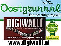 Digiwalli Stadskanaal, Stadskanaal