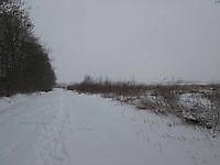 Sneeuw in de Tjamme Beerta, Oldambt