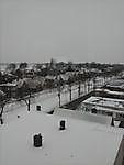 musselkanaal in de sneeuw Musselkanaal, Stadskanaal