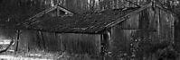 Oude vervallen schuur Goldhoorn, Oldambt