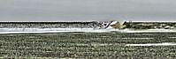 Het gele dijkgat Oostwold, Oldambt
