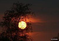 zonondergang Ter Apel, Westerwolde