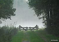natuur mist Ter Apel, Westerwolde