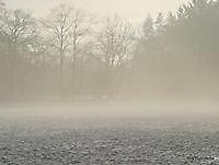 ochten mist Ter Apel, Westerwolde