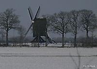 stander molen Ter Wisch Ter Wisch, Westerwolde