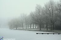 Winter in het park Winschoten, Oldambt
