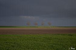 Netjes op een rij Oost Groningen, Oldambt