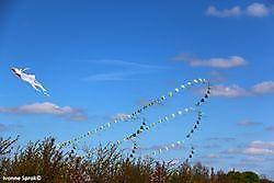 Opening Vliegerseizoen 2016 Blauwestad Blauwestad, Oldambt