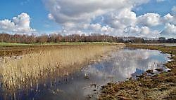 Heemtuin Muntendam Muntendam, Midden-Groningen
