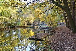 herfst kleuren langs de oude Ruiten - A in Sellingen Sellingen, Vlagtwedde