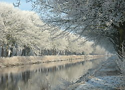 bevroren mist langs het Tijdenskanaal Bellingwolde, Westerwolde