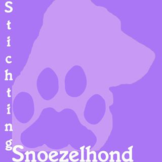Stichting Snoezelhond Finsterwolde