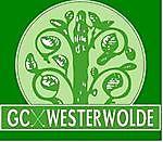 Meer informatie op het bedrijfsprofiel! Golf Club Westerwolde Vlagtwedde