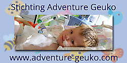 More information on the company profile! Stichting Adventure Geuko Oude Pekela