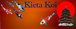 More information on the company profile! Kiëta Koi Veendam