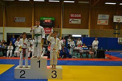 Judo Tan-Ren-Jutsu wint 2 keer goud en 2 keer brons op het Jubileumtoernooi te Scheemda. Finsterwolde